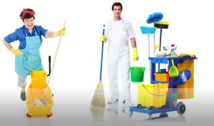 About Pure Cleaners